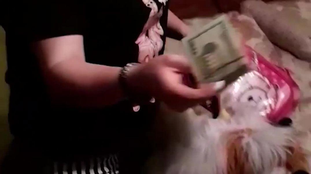 26-ամյա աղջիկը ազգականուհու տնից 8200 դոլար էր գողացել ու բռնվել․ Էրեբունու ոստիկանների բացահայտումը